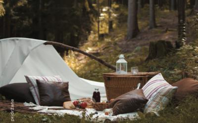 Čarobni piknik v naravi