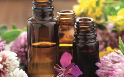 Delavnica aromaterapije
