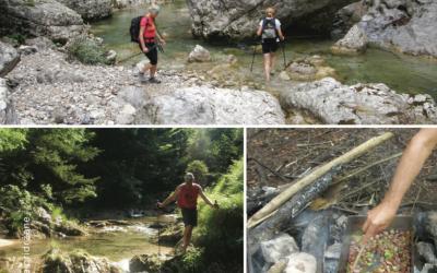 Treking po reki Iški ali Zali