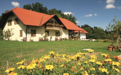 Turistična kmetija Borko